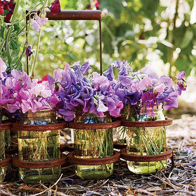 sweet peas: Flowers Gardens, Gardens Ideas, Sweetpea, Purple Flowers, Flowers Arrangements, Beautiful, Milk Bottle, Mason Jars, Sweet Peas