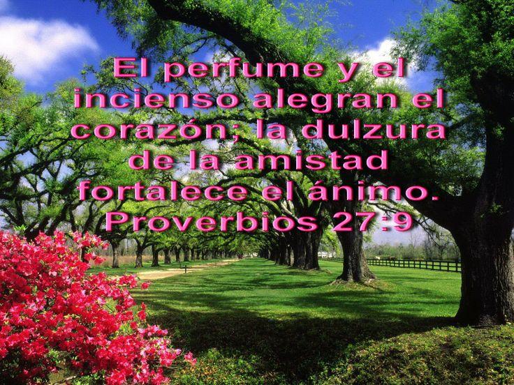 paisajes de la biblia | Biblia, paisajes y maravillas: Proverbios 27:9