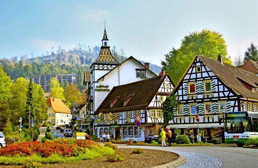 Das traditionsreiche Hotel im Kurort Bad Herrenalb (Landkreis Calw) war viele Jahre ein erfolgreiches Sterne-Lokal am Rand des Nordschwarzwalds. Es ist eines der ältesten Häuser im Südwesten, seine Geschichte reicht zurück bis ins 12.Jahrhundert. Foto: dpa