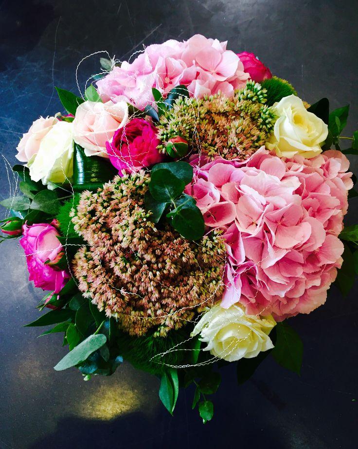 Hortensias roses jardin