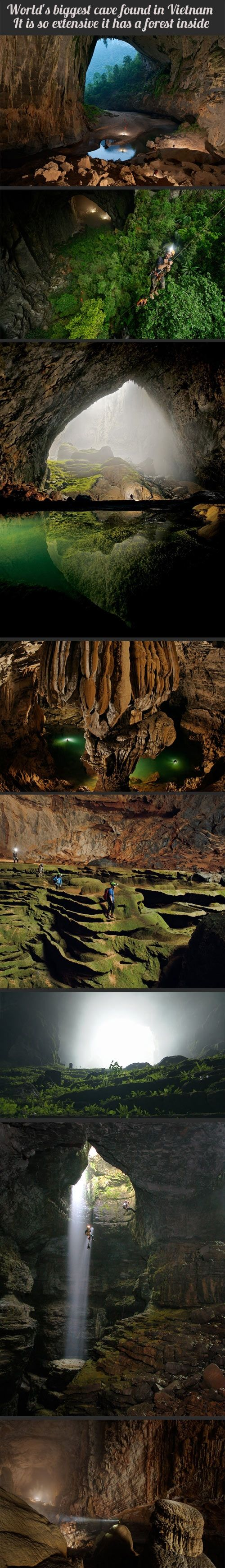 Worlds biggest cave in Vietnam - there is a forest inside.