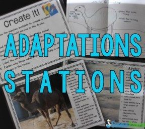This lesson would be used to provide students with a great hands-on activity to…