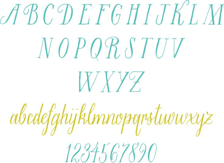 Best molly jacques typography images on pinterest