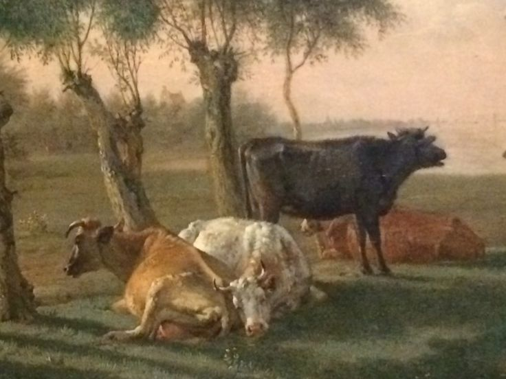 Vacas holandesas en el Rijks Museum /// Dutch cows in the Rijks Museum