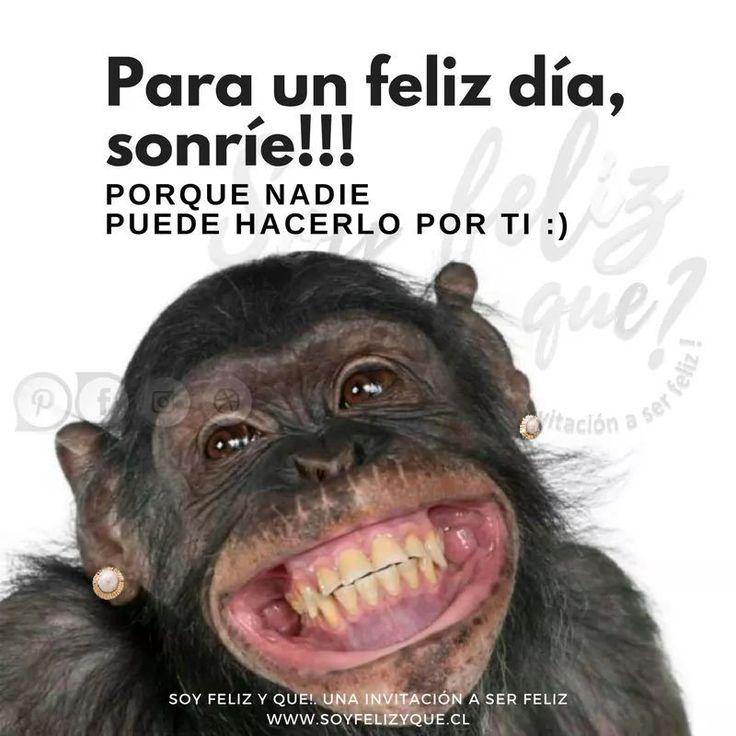 #soyfelizyque #unainvitacionaserfeliz #felicidad #feliz #felicidades #muyfeliz #masfeliz #happy #happyday #veryhappyday #veryhappy #séfeliz #másfeliz #bienestar #felices #tanfeliz #yosoysfyq #sfyq #frases #vivir #amar #corazon #motivacion