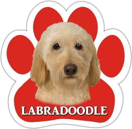 Labradoodle, Yellow Car Magnet With Unique Paw Shaped Design Measures 5.2 by 5.2 Inches Covered In High Quality UV Gloss For Weather Protection -- You can find more details by visiting the image link.