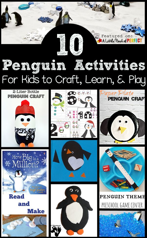 Learn about Penguins- Penguin Facts - YouTube