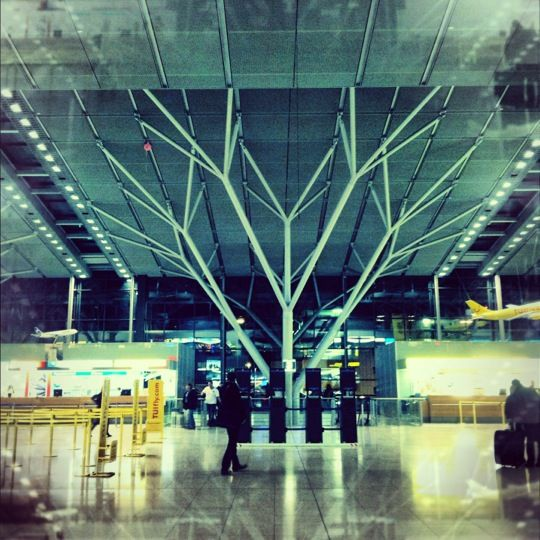 81 Best Airport Architecture Images On Pinterest