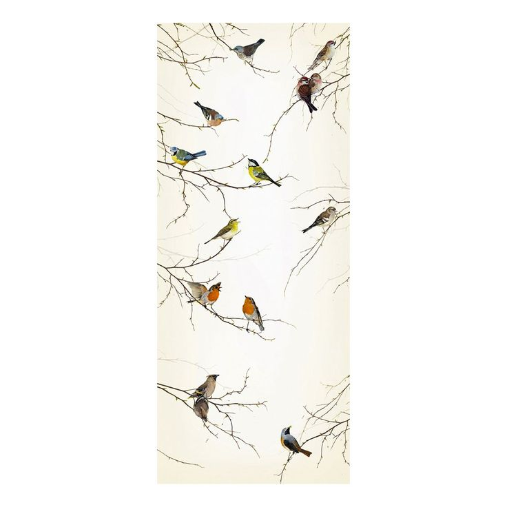 Brewster Home Fashions 2-1014 Komar Birds 2 Panel Photomural at ATG Stores