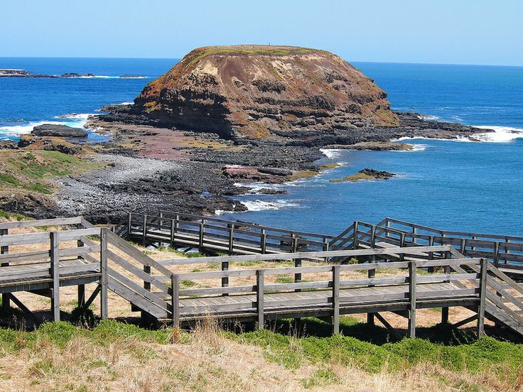 The Nobbies, Philip Island, Victoria, Australia