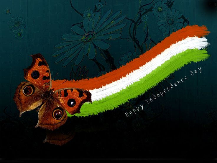 tiranga-butterfly Independence Day Celebration Wallpaper Happy Independence Day Wishes, Greetings, Ecards, Scraps, Thoughts, Sayings, Motivational Quotes for India Download Free