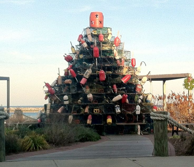 8 Best Christmas Holidays Images On Pinterest Christmas  - Christmas Trees Ri