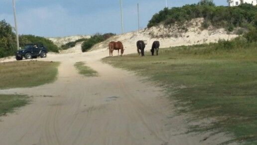 4 wheeler rentals in outer banks nc
