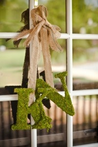 I already have my moss letters done.  Thinking I like this with the burlap. Thoughts?