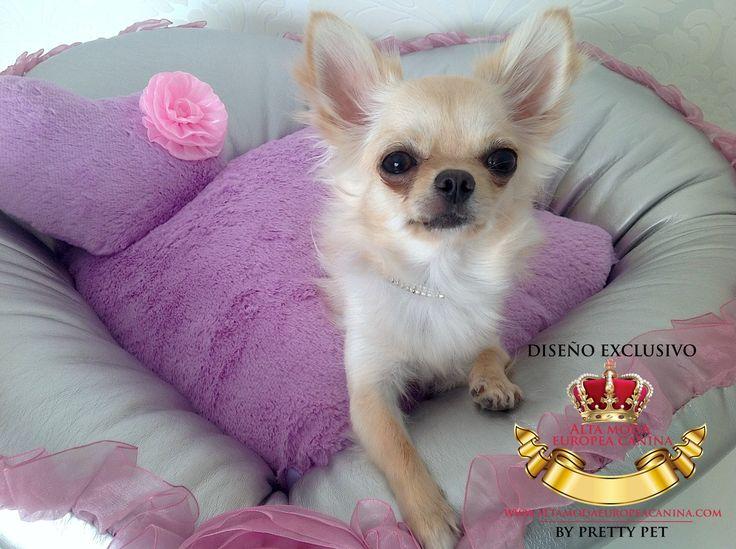 http://altamodaeuropeacanina.com/es/38-camas-y-sofas-para-perros