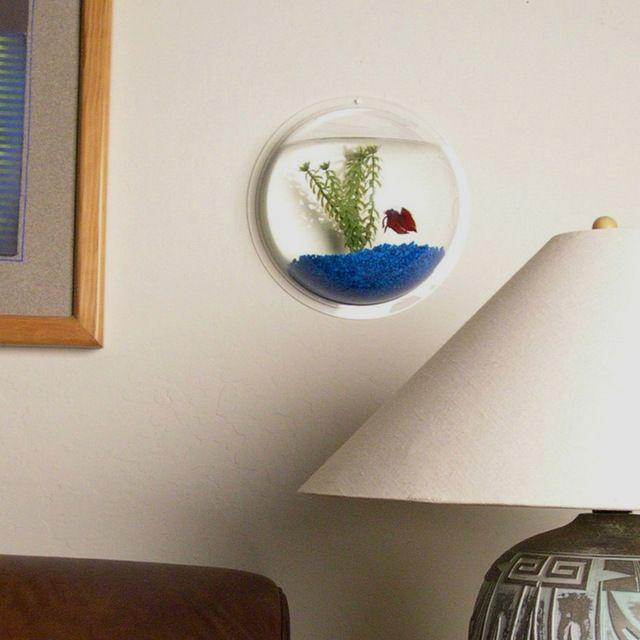 Acrylic Fishbowl Wall Mount modern pet care