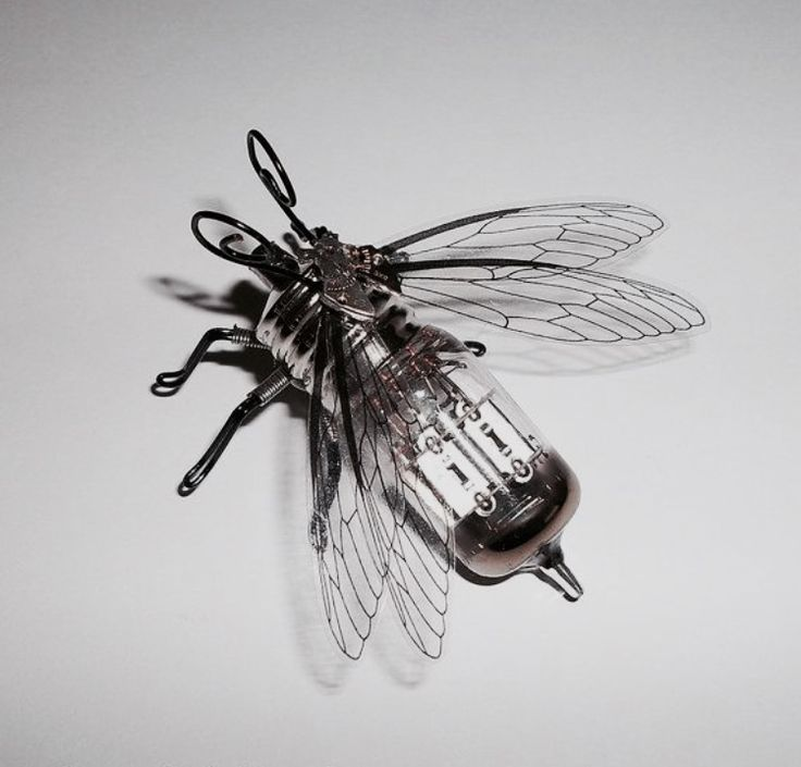 Fly spy drone