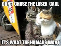 Funny Memes Xd : Best memes lol xd images ha ha funny stuff and