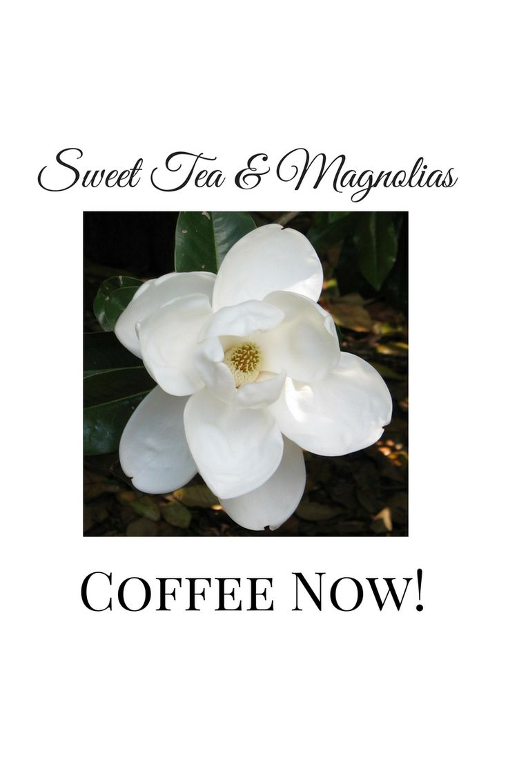 Coffee.  Coffee Recipes.  Coffee Drinks.  Coffee Sayings.  Coffee Recipes.  Coffee Cups.  Coffee Makers.  French Press.  Cold Brew.