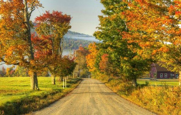 Obrazy jesień, tapety drogowe, zdjęcia krajobrazu, drzewa tła