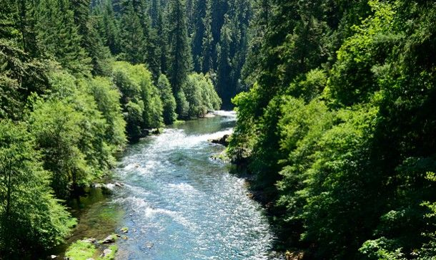 Southern Oregon Scenic Drives One Day Oregon Travel