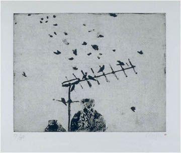 Starlings (sturnus vulgaris) - Prunella Clough