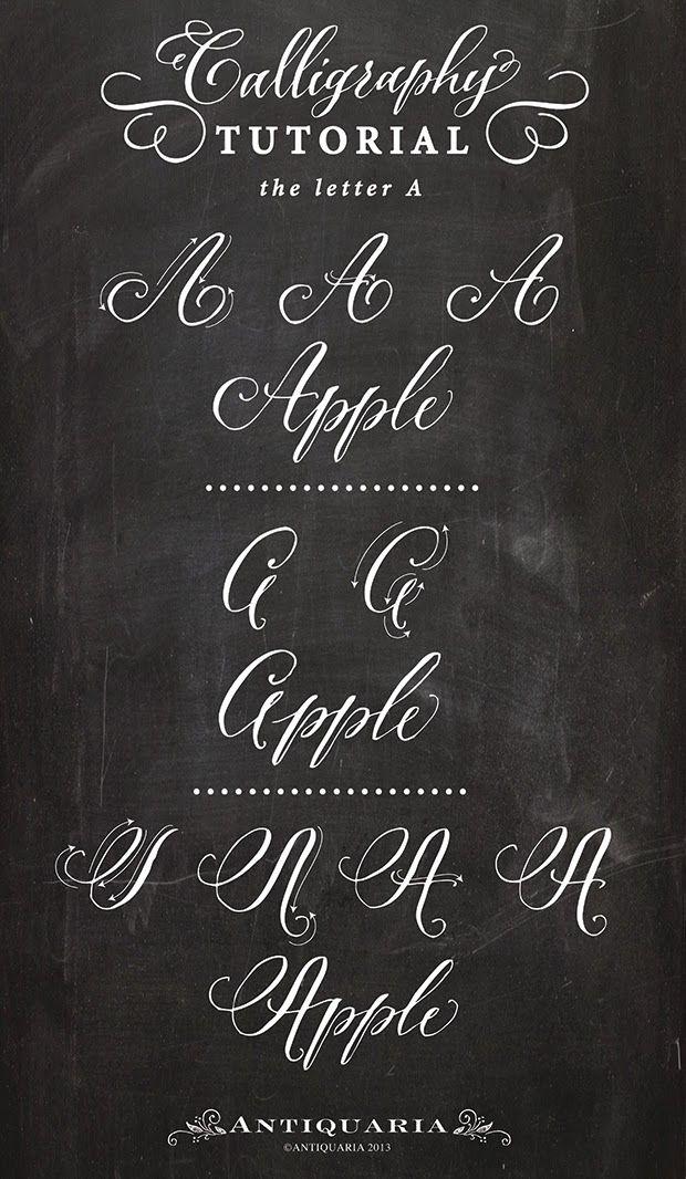 antiquaria  calligraphy tutorial  the capital letter  u0026quot a