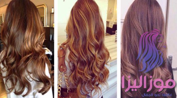 افضل موضة صبغة شعر بني للشعر 2019 Hair Styles Hair Long Hair Styles