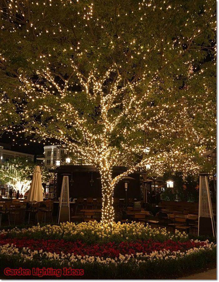 Garden Lighting Ideas 2020 What Is The Best Outdoor Light In 2020 Outdoor Christmas Lights Outdoor Backyard Outdoor