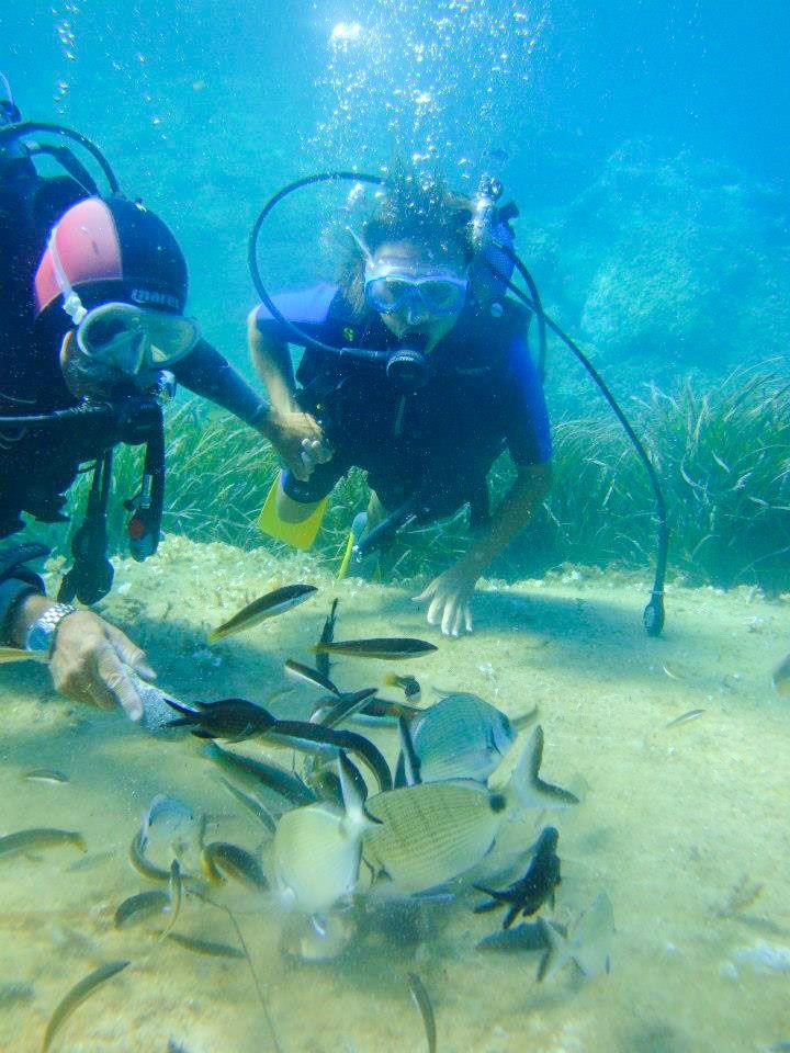 Réservez votre plongée en Corse : Baptême dans les Îles Sanguinaires