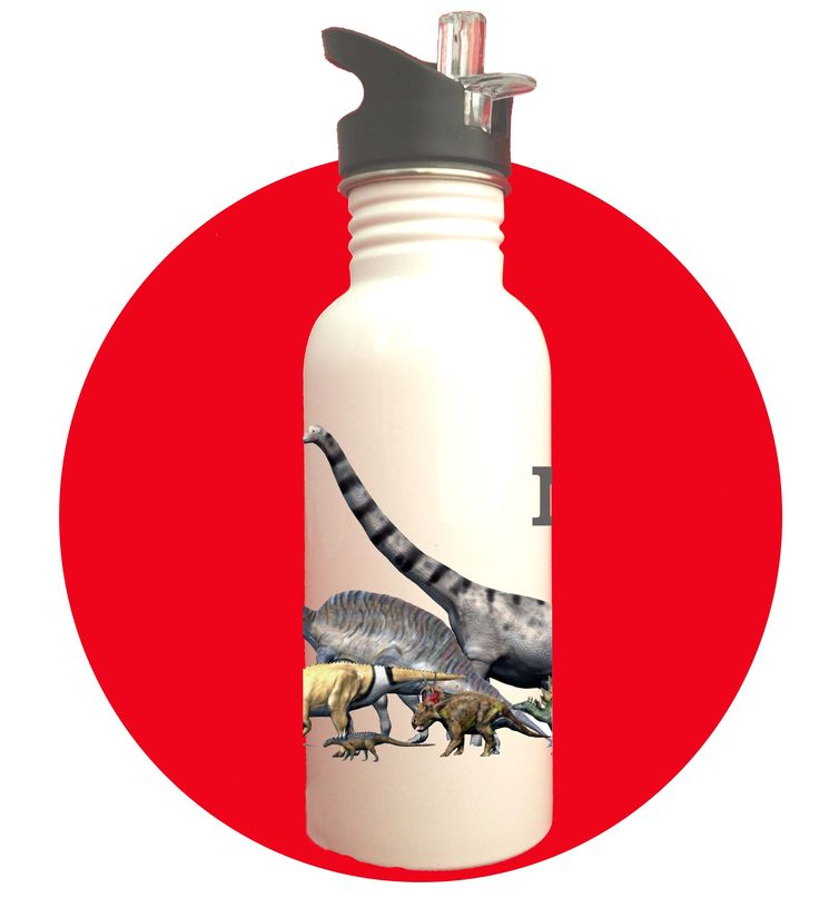 DINO 5 STAINLESS STEEL DRINK BOTTLE - GREY NAME (PERSONALISED)  $21 inc gst