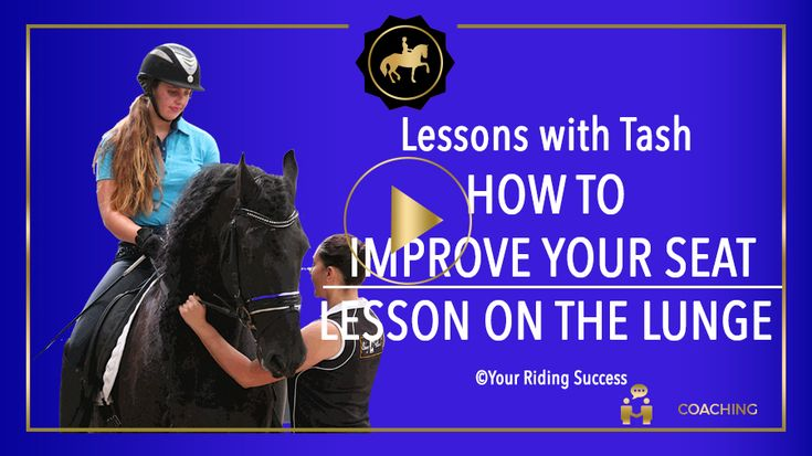 Course One | Part 2 | DMA | Your Riding Success