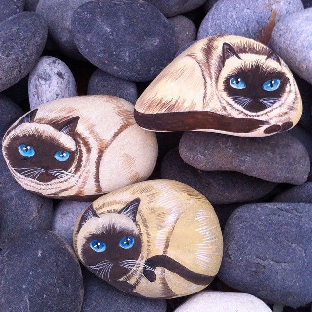 #siyam #kedileri #mavi #gözler #elyapımı #doğal #taşlar #dekoratif #ev #hediye #dekorasyon #sanat #siamese #cats #kitty #blue #eyes #lovely #natural #handpainted #stones #art #home #gift #summer #mood