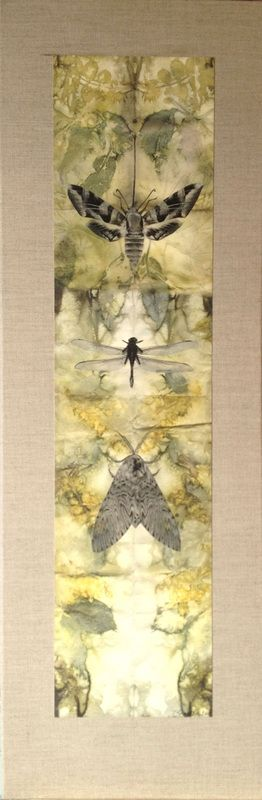 Julie Shackson. Symbiosis Triptych (single panel). Botanical leaf/dye prints scanned and then printed onto Arches 88 paper, mounted on natural linen canvas stretchers, with added drawn and printed images of insects.
