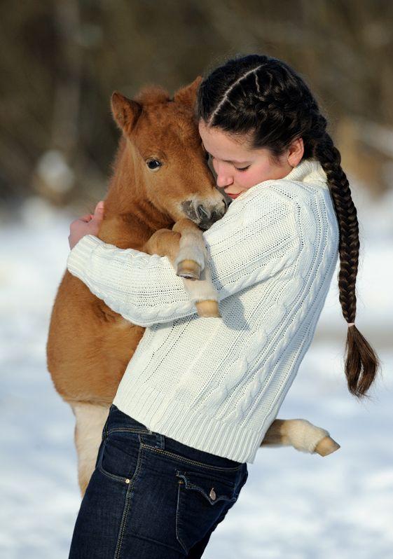 Baby horse hug…aww!