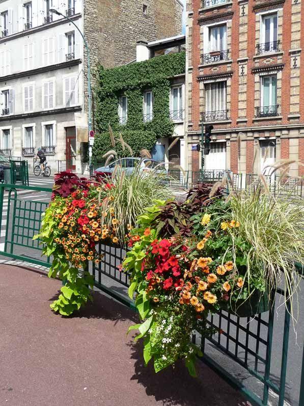 25 best ideas about jardini res fleuries on pinterest fleurs ext rieures plante verte. Black Bedroom Furniture Sets. Home Design Ideas