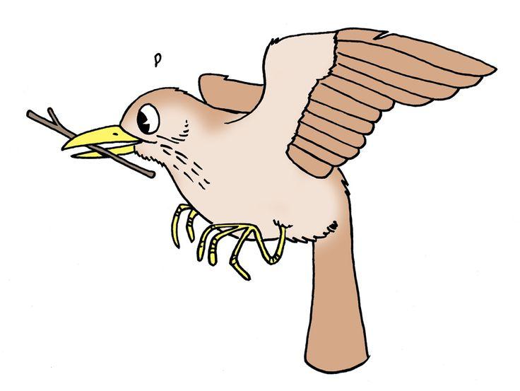 BirdLife Suomi - Lasten lintuviikko