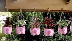 Excellent DIY examples for eye-catching flower beds from old or unnecessary things