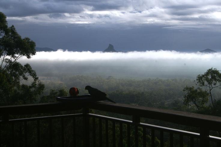 After the rain at Uluramaya Retreat.