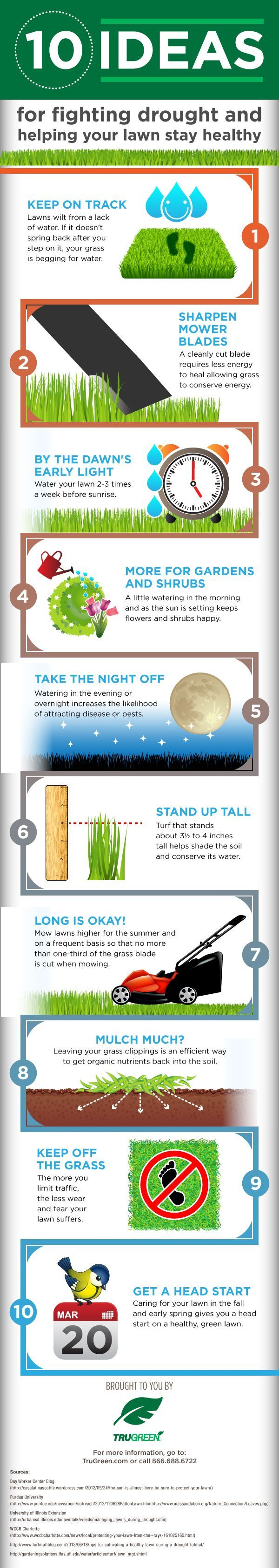 Best Lawn Care Tips: 10 Ways to Maintain Your Organic Lawn http://homeandgardenamerica.com/best-lawn-care-tips