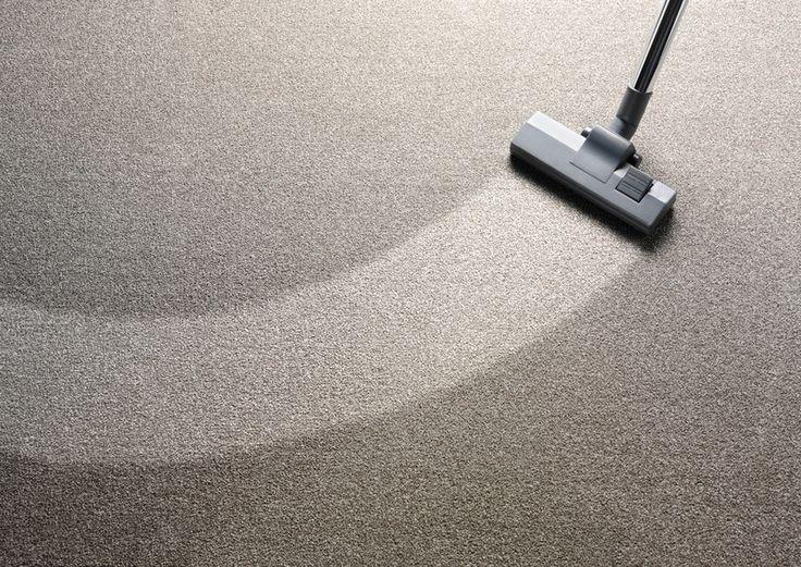 Ratgeber Teppich Reinigen