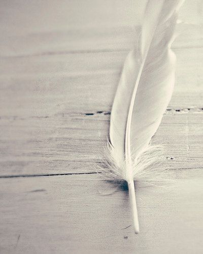 Tickle me with a feather and make me laugh. If you're lucky enough I might break wind. Shhh but don't tell anybody because its a secret.