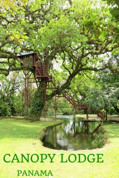 Canopy Lodge, El Valle de Anton, Panama.Two guided hikes with ornithologist are organized daily.
