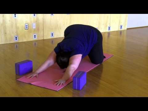 Sun Salutation Modifications with Amber Karnes of Body Positive Yoga - There are a few sticky spots for plus size yogis who want to make sun salutations part of their practice. Here are some modifications for plus sized bodies.