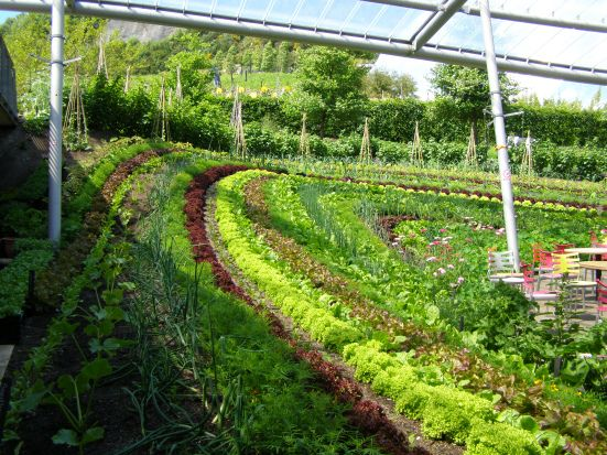 Best Potager The Modern Kitchen Garden Images On Pinterest