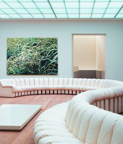 Scandinaviancollectors: Modular Sofa By Ueli Berger, Eleonore Peduzzi Riva,  Heinz Ulrich And Klaus Vogt In Manufactured By De Sede, Switzerland.