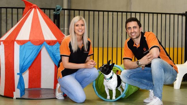 Alexandra Argenio's business, Adelaide's Dogcity Daycare, has been named as one of 25 finalists in this year's SA Fast Movers competition.