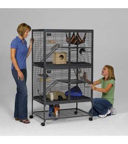 25 Best Ideas About Small Animal Cage On Pinterest