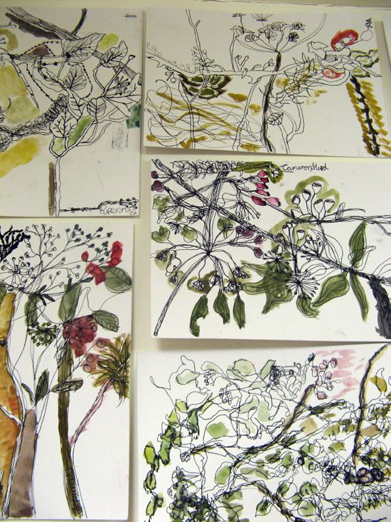 Children's studio network drawings with colour notes added  http://www.accessart.org.uk/along-hedgerow-sara-dudman/