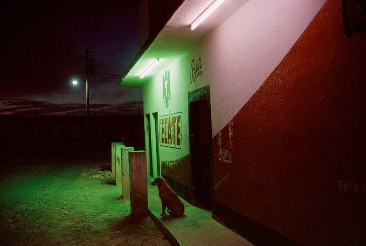 Magnum Photos - Alex Webb P1516B1F_DEBOLSTER_AURELIEN_REFERENT7